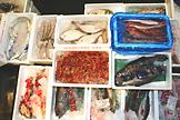 鮮魚近海部写真2