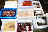 鮮魚近海部2写真1