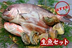 生魚セット